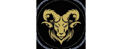 Oportunidades Denver Broncos