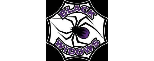 Oportunidades Jacksonville Jaguars